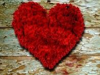 coeur-de-roses-rouges
